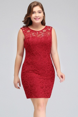 Sexy Trumpt Scoop Plus size Short Sleeveless Lace Cocktail Dresses_5