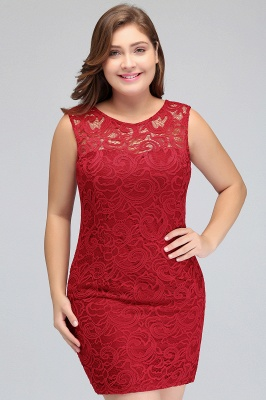 Sexy Trumpt Scoop Plus size Short Sleeveless Lace Cocktail Dresses_9