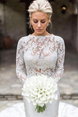 Elegant Long Sleeve Lace Mermaid Wedding Dresses | Fit And Flare Wedding Gown