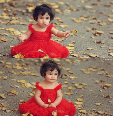 Cute Red Tulle  Flower Girls Tutu Dress Online_1
